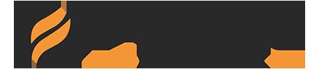 Forte Network Logo